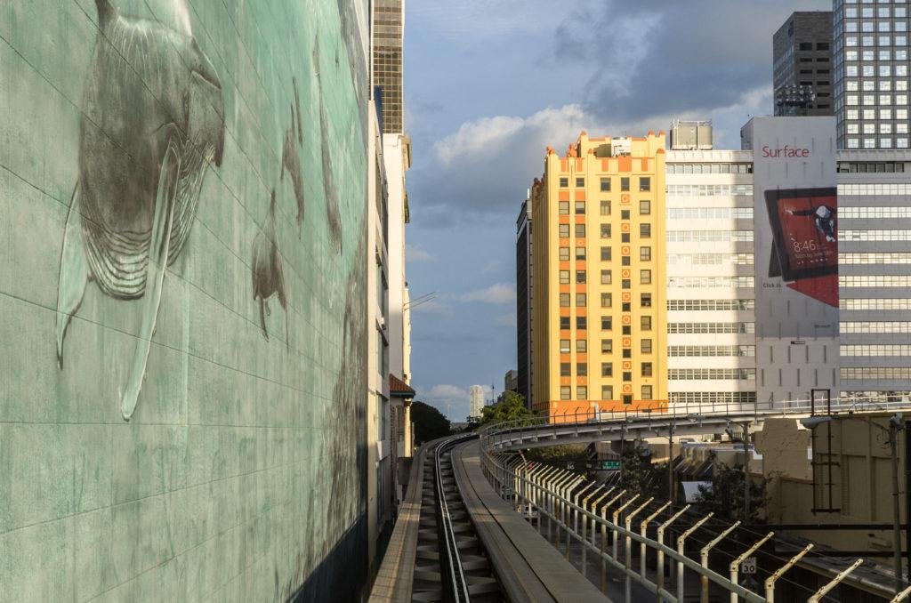 Miami 2012 (26)