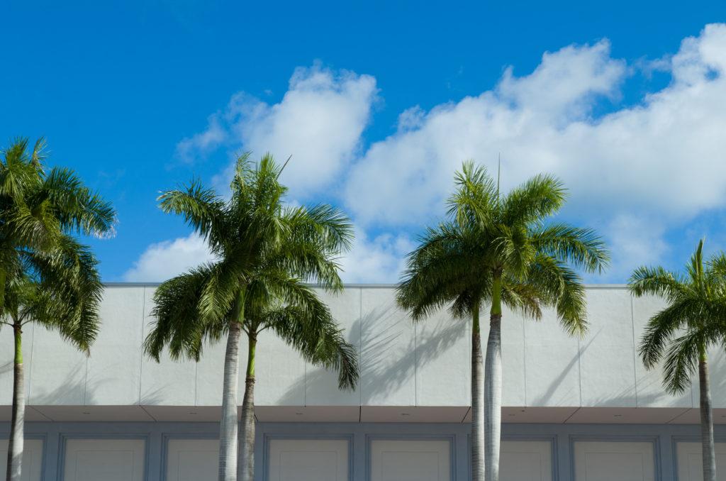 Miami 2012 (31)